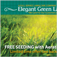 Elegant Green Lawns Postcard